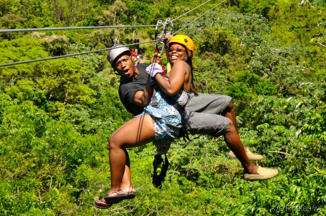Image Result For Canopy Zipline