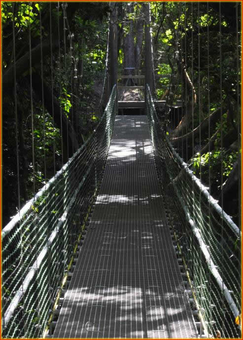 Eco Walkways and Suspension Bridges